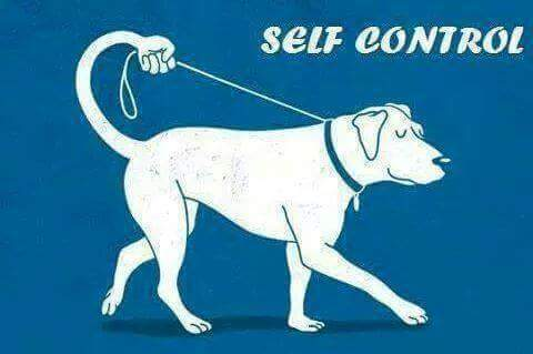 Art-of-Self-Control