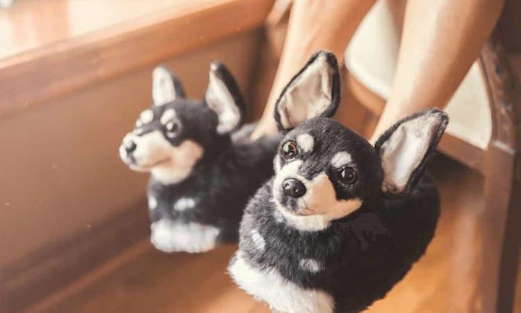 cuddle-clones-slippers-1